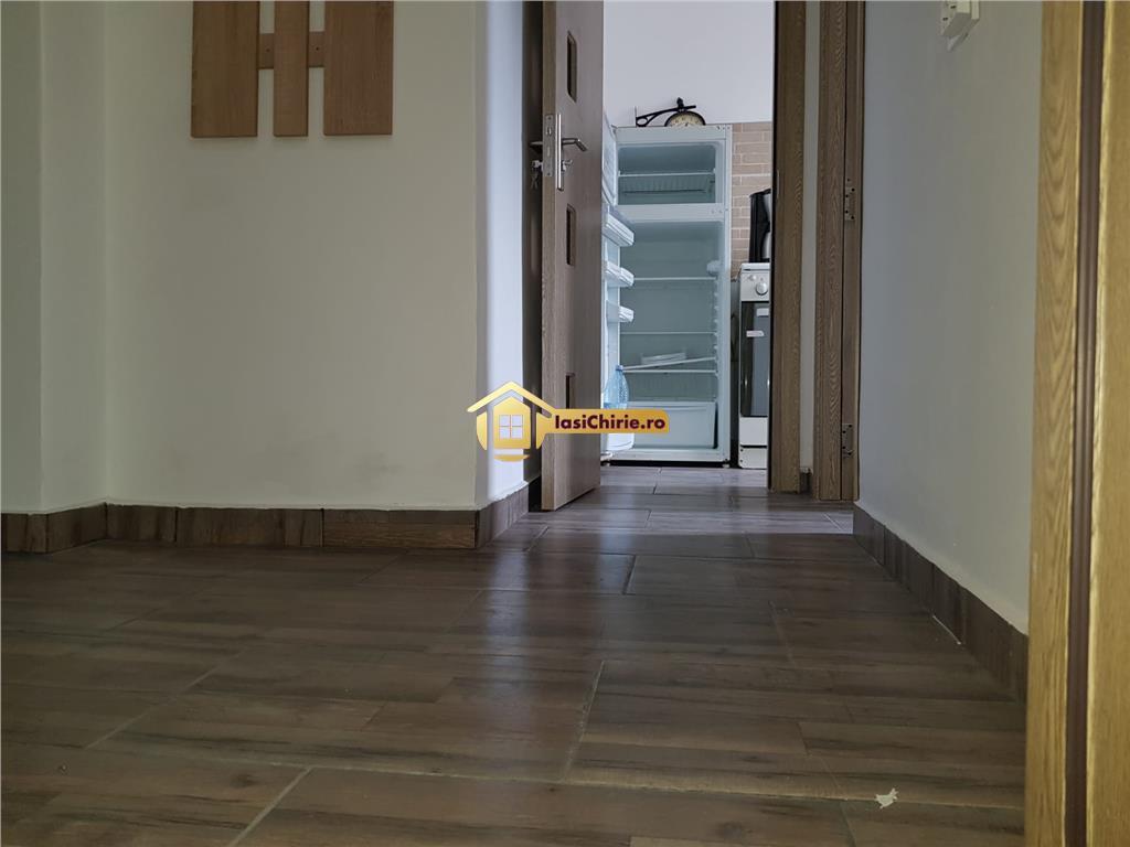 Apartament de inchiriat cu o camera,Bucsinescu, renovat